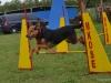 agility_17_kerulet-3