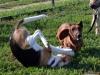 kutyanapkozi (2)
