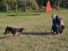 bentlakasos_kutyaoktatas-3