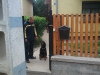 bentlakasos_kutyaoktatas-5