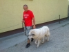 bentlakasos_kutyakikepzes_kutyakozpont-4