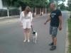 kutyakikepzes_kutyakozpont_kutyaiskola-35