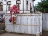 kutyakikepzes_kutyakozpont_kutyaiskola-41