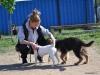kutya_szocializacio-3
