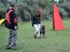 kutyakikepzo_berles-1