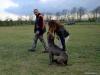 kutyakikepzo_berles-3