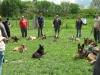 halado_csoport_kutyakuzpont-1