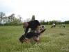 kutyasuli-4_0