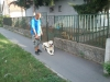 kutyakikepzes_haznal-8