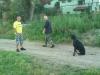 kutyaoktato_berles-3