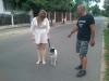 kutyakikepzes-1