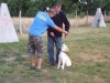 kutyakikepzo_berles_04