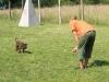 kutyakikepzes_jutalomfalattal_kutyakozpont-2
