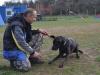 napkozis_kutyakikepzes-13