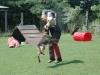 orzo_vedo_kutyakikepzes_kutyakozpont-4