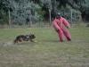 kutyatamadas_prodram-27