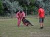 kutyatamadas_prodram-31