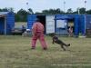 kutyatamadas_prodram-34