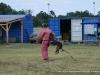 kutyatamadas_prodram-35