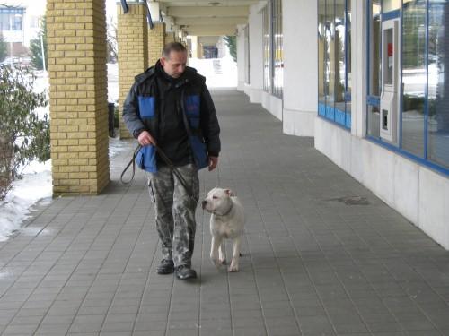 kutyakiképzés 066